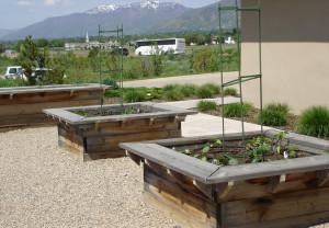 Mature Gardening